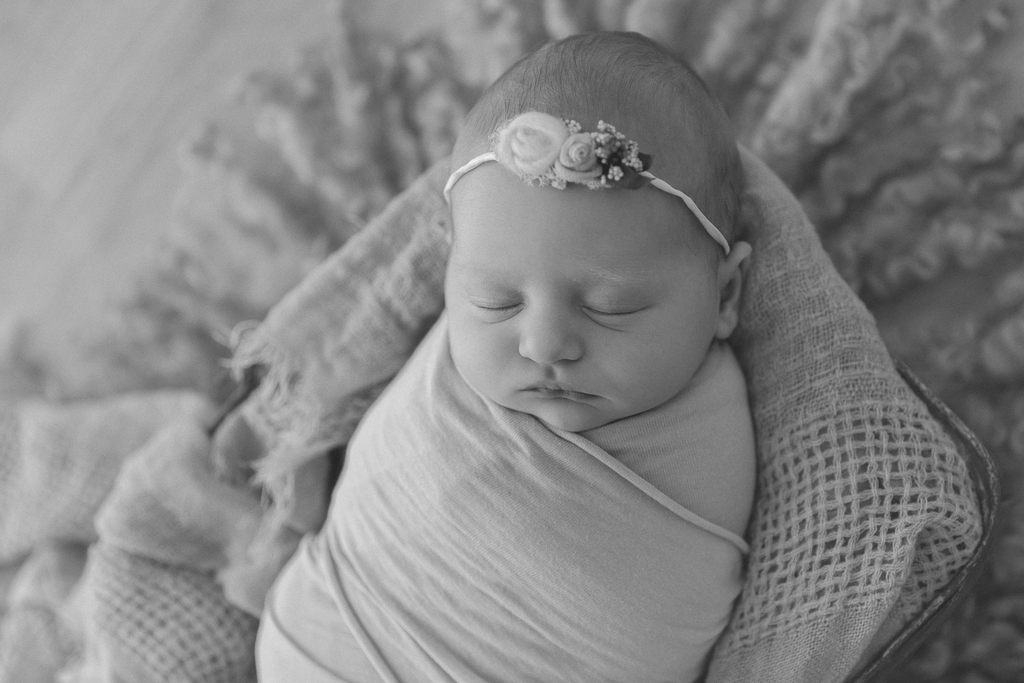 baby-newborn-photo-adelaide