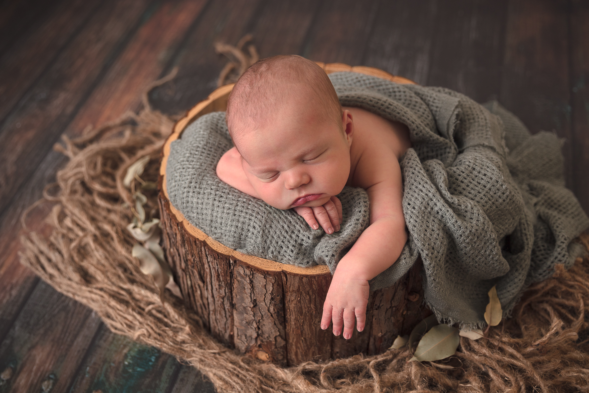bark-tub-newborn-baby-adelaide-photography-jc-imagery-craigmore