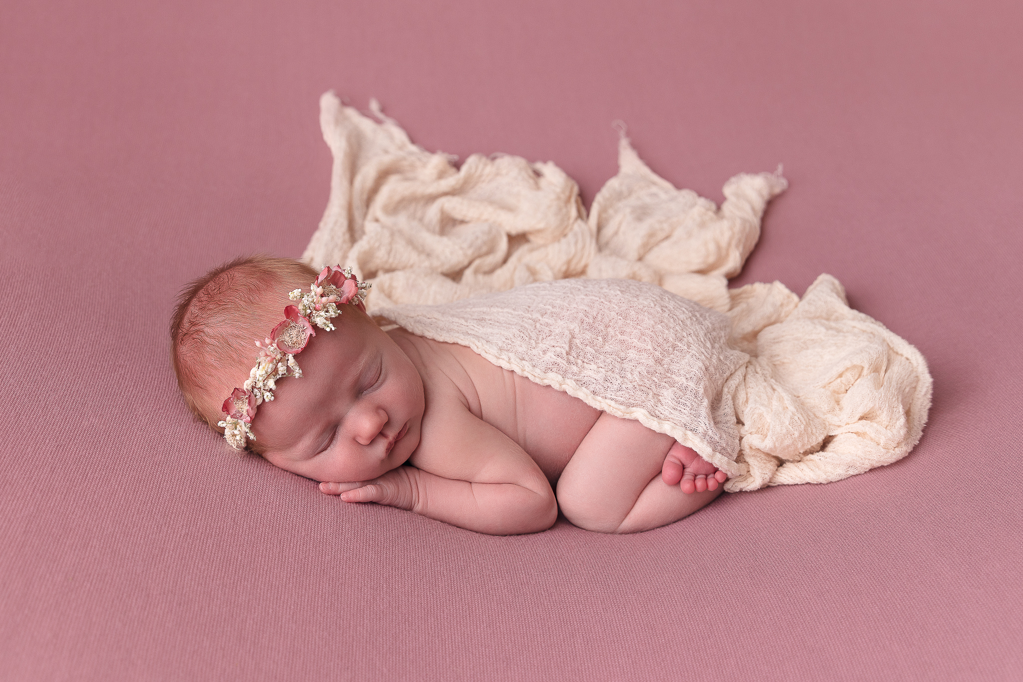 newborn-photography-adelaide-craigmore-south-australia